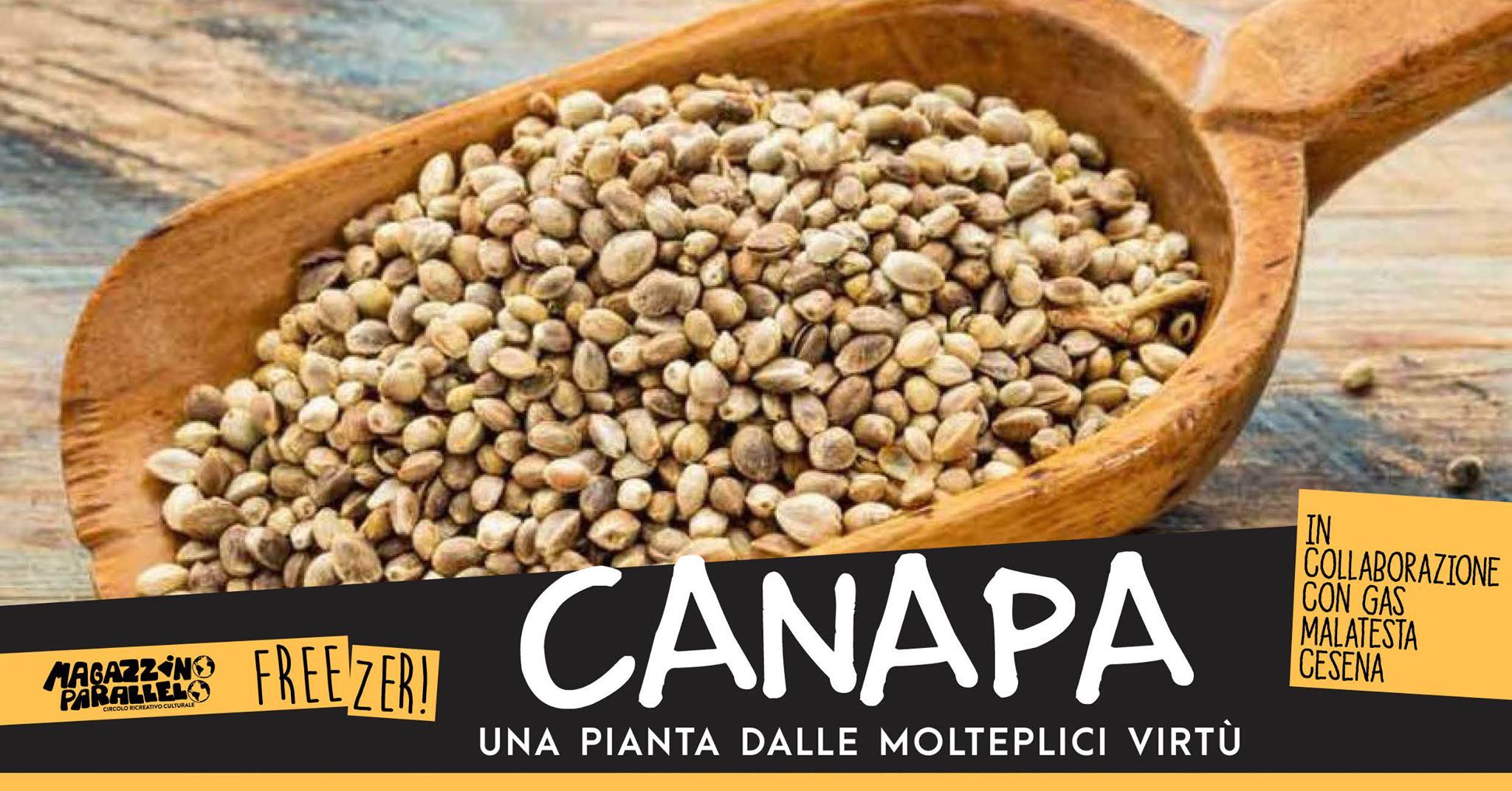 Parliamo di Canapa / at Freezer!